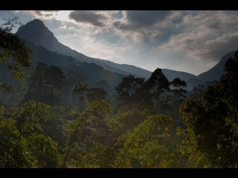 A view of the conical-shaped Adam's Peak - Sri Pada, from the town of Dalhousie