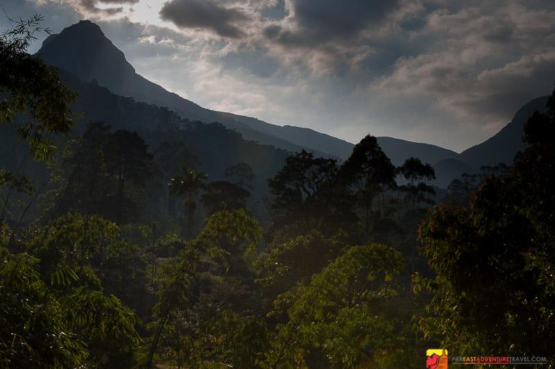 A view of Adam's Peak or Sri Pada, from the town of Dalhousie, Sri Lanka