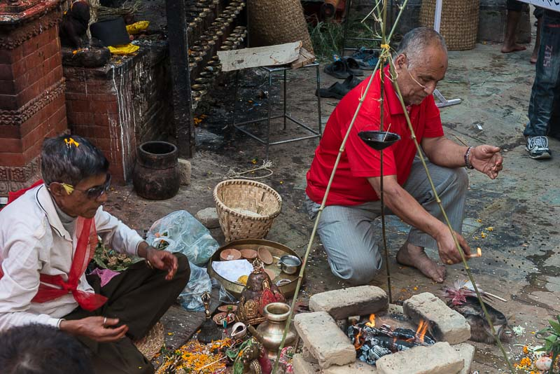 Goat sacrifices during Dashain in Kathmandu's Durbar Square
