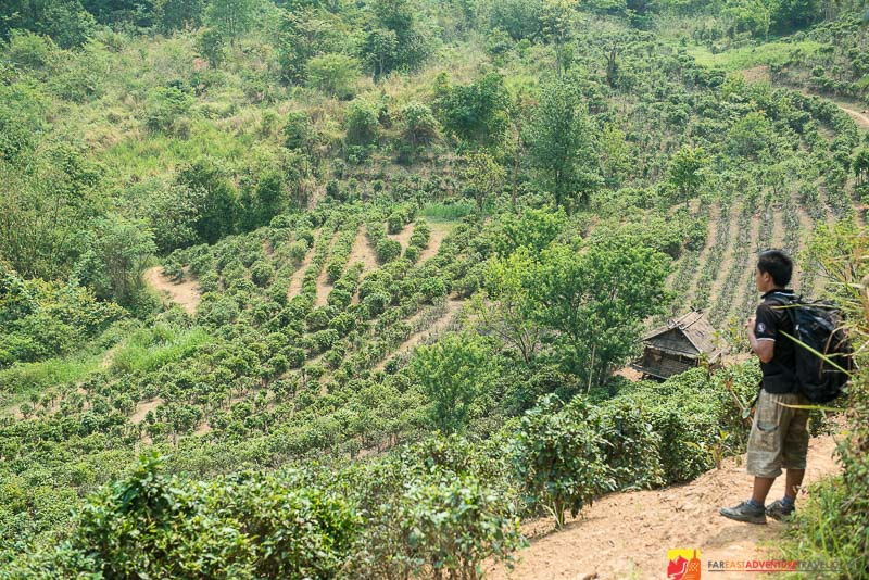 Starting out a trek to remote Akha Hill Tribe Villages in Northern Laos