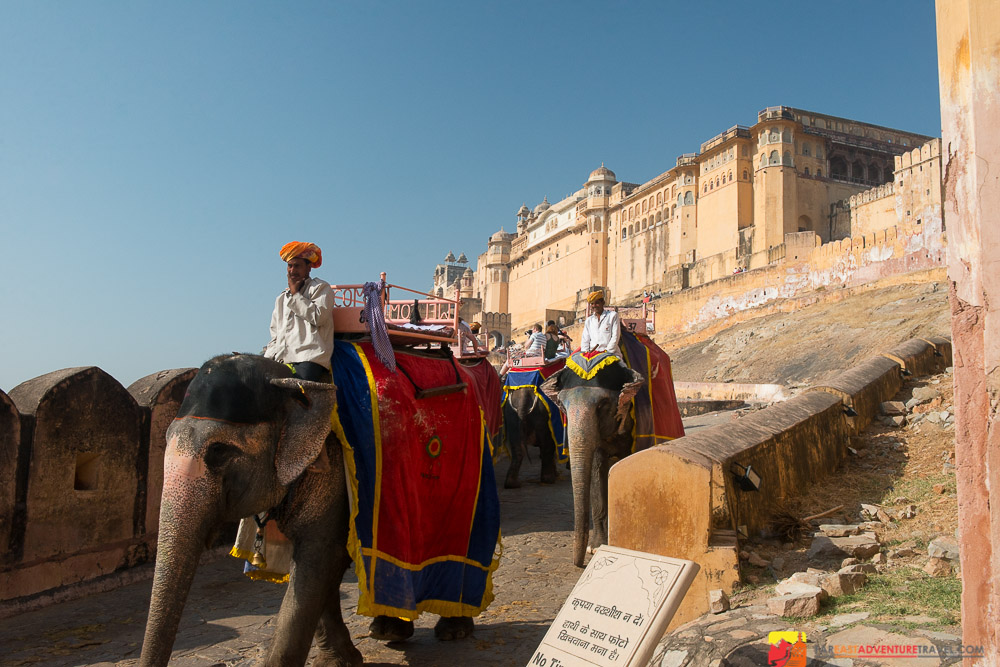 The walk down after transporting tourists to Amber Fort